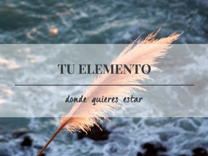 Arantxa-Isidoro_tu-elemento